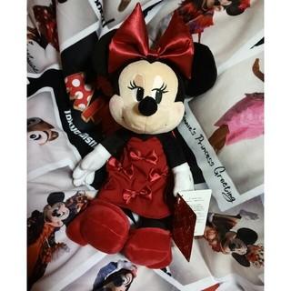 Disney - ミニーちゃん ぬいぐるみ 2020 ミニーちゃんの日