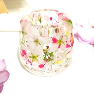 No.64 桜の固まるハーバリウムペン立て•印鑑立て•歯ブラシスタンド(ドライフラワー)