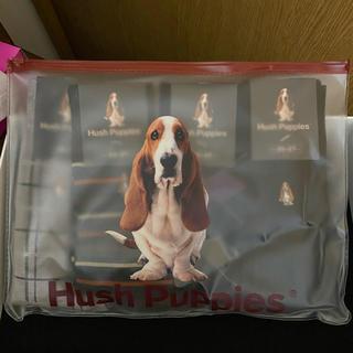 Hush Puppies - メンズ 靴下 4足セット ギフト 新品