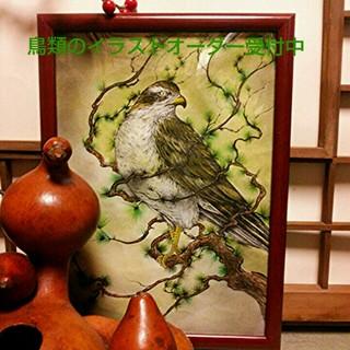 鳥類のイラストお描きします🐣(ウェルカムボード)