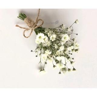 かすみ草 スワッグ ドライフラワー ガーランド 結婚式 飾り 誕生日 インテリア(ドライフラワー)