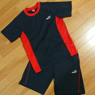 PUMA - PUMA 半袖短パンセット 150cm