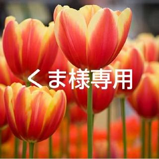 カネボウ(Kanebo)のくま様専用(ブースター/導入液)