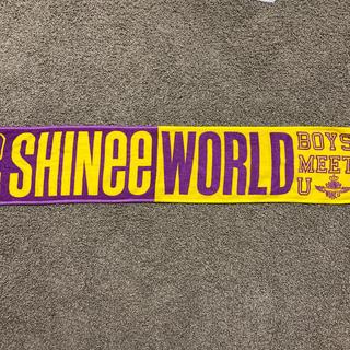 シャイニー(SHINee)のSHINee WORLD 2013年 グッズ(アイドルグッズ)