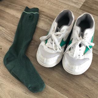 MIZUNO - 私立高校 室内用 運動靴