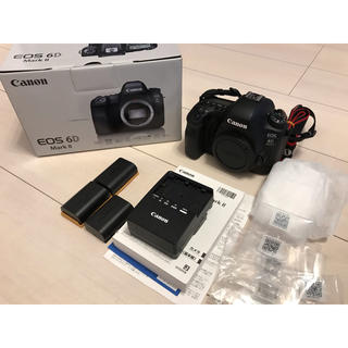 キヤノン(Canon)のキャノン EOS 6D Mark II(デジタル一眼)