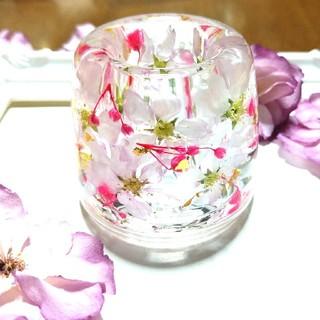 ★SALE★No.65【Lサイズ】桜の固まるハーバリウムペン立て•印鑑立て(ドライフラワー)