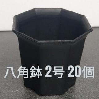 ◎20個◎ ブラック 2号 / 2寸 / 6cm 八角鉢 プラ鉢(その他)