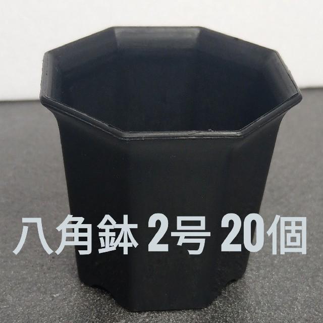 ◎20個◎ ブラック 2号 / 2寸 / 6cm 八角鉢 プラ鉢 ハンドメイドのフラワー/ガーデン(プランター)の商品写真