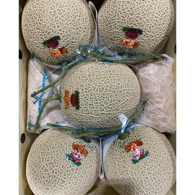 高知 赤肉 高級アールスメロン5玉 仁淀ブルー 食品/飲料/酒の食品(フルーツ)の商品写真