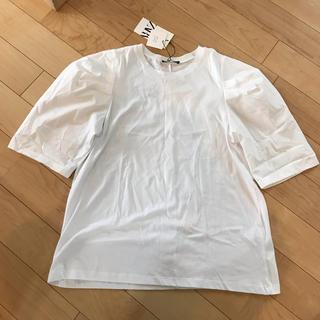 ZARA - 【ザラ】Tシャツ 試着のみ