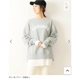 Spick and Span - ☆新品☆スピックアンドスパン  スウェットプルオーバー