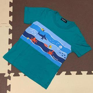 kladskap - クレードスコープ 海の生き物 Tシャツ 110