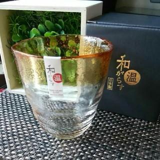 トウヨウササキガラス(東洋佐々木ガラス)のお湯割り焼酎グラス(グラス/カップ)