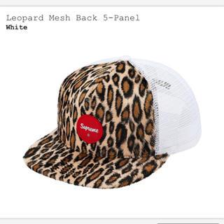 Supreme - Supreme leopard mesh back 5-panel