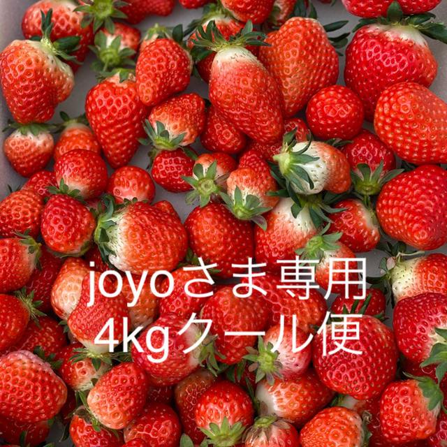 joyo様専用●規格外さがほのか4kg●クール便●いちご苺イチゴ 食品/飲料/酒の食品(フルーツ)の商品写真