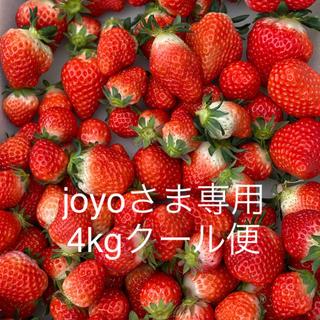 joyo様専用●規格外さがほのか4kg●クール便●いちご苺イチゴ(フルーツ)