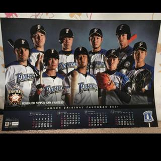 ホッカイドウニホンハムファイターズ(北海道日本ハムファイターズ)の(非売品)日本ハムファイターズ カレンダー(スポーツ選手)