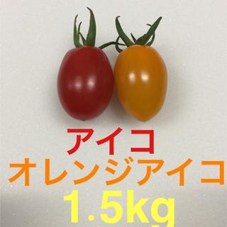 農家直送 アイコ 1.5kg