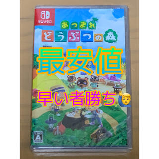 Nintendo Switch - 任天堂動物の森ソフト