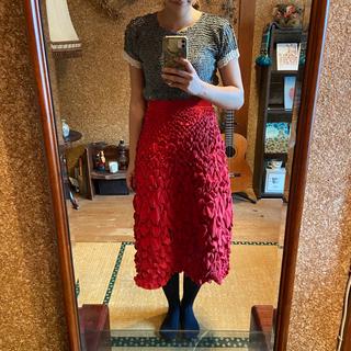 イッセイミヤケ(ISSEY MIYAKE)のイッセイミヤケ ロングスカート(ロングスカート)