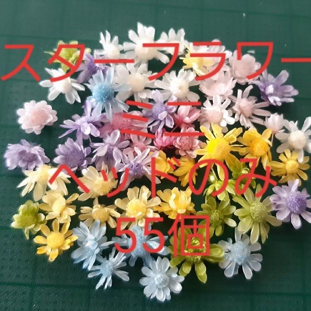 スターフラワーミニ8色 お試しヘッドのみ55個 ハンドメイドのフラワー/ガーデン(ドライフラワー)の商品写真