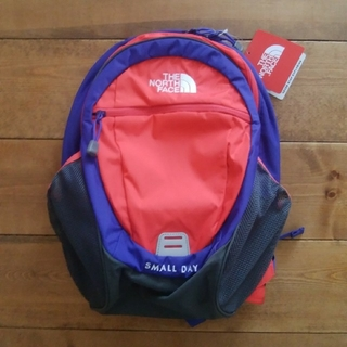 THE NORTH FACE - 【新品】NORTH FACE K Small Day バッグパック 15L