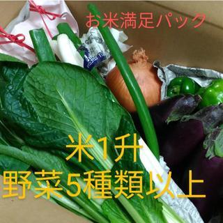 米、野菜詰め合わせセット(お米満足パック1升)