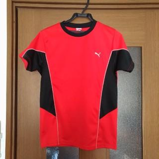 PUMA - 送料込み☆PUMA Tシャツ 160cm 赤