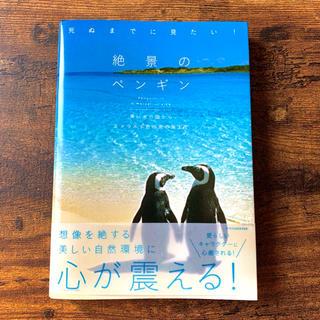 宝島社 - 死ぬまでに見たい! 絶景のペンギン