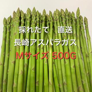長崎産アスパラガス Mサイズ 500G(野菜)