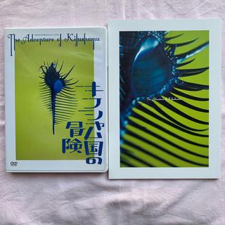 キスマイフットツー(Kis-My-Ft2)のキフシャム国の冒険 DVD(舞台/ミュージカル)