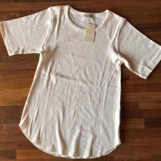 SM2 - SM2 ランダム リブ Tシャツ free 新品未使用 レイヤード