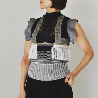 マメ(mame)の未使用 mame トップス サイズ2(カットソー(半袖/袖なし))