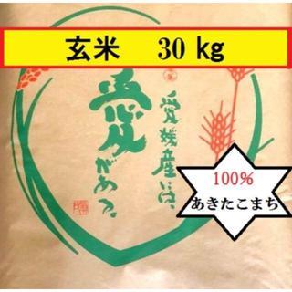 お米 令和元年 愛媛県産あきたこまち 玄米 30kg