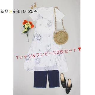 Mila Owen - 新品✨定価10120円 ミラオーエン Tシャツ&ワンピース ホワイト 大特価