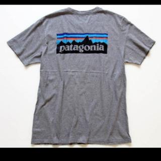 patagonia - 新品 パタゴニア Tシャツ