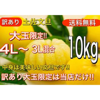 訳あり 土佐文旦 4L〜 3L サイズ混合 10kg 送料無料