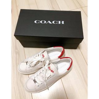 COACH - COACH スニーカー 23cm