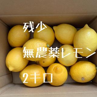 無農薬 レモン