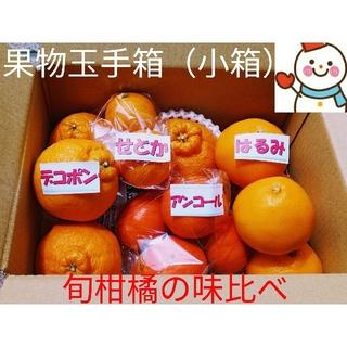 果物玉手箱(小箱)♥旬の柑橘味比べ♥雪だるまから直送