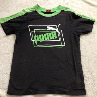 PUMA - PUMA Tシャツ 140cm
