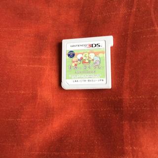 ニンテンドー3DS - すみっコぐらし むらをつくるんです すみっこ すみっこぐらし 3ds ソフト