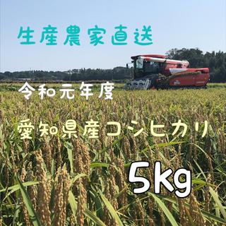 愛知県産コシヒカリ 5㎏(白米4.5㎏)