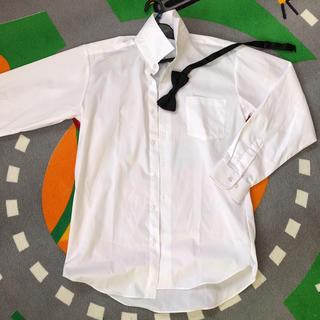 シマムラ(しまむら)の新品 ワイシャツ 白シャツ カッターシャツ 160 男の子 子供 キッズ 白(ブラウス)