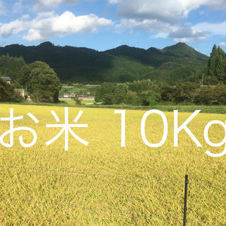 ❤️令和 元年 収穫 『ひとめぼれ』10Kg❤️