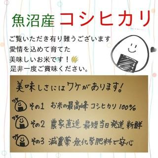お米5kg令和元年魚沼産コシヒカリ白米