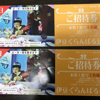 伊豆ぐらんぱる公園 入園券 4名分(遊園地/テーマパーク)