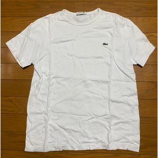 LACOSTE - ラコステ Tシャツ