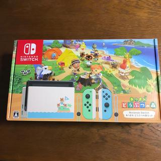 Nintendo Switch - Switch どうぶつの森 同梱版